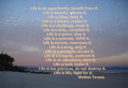 sayings-bout-life2