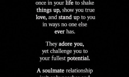 A soulmate  usually only comes once in your life to shake things up,
